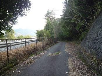 P1150256自動車道沿い.JPG